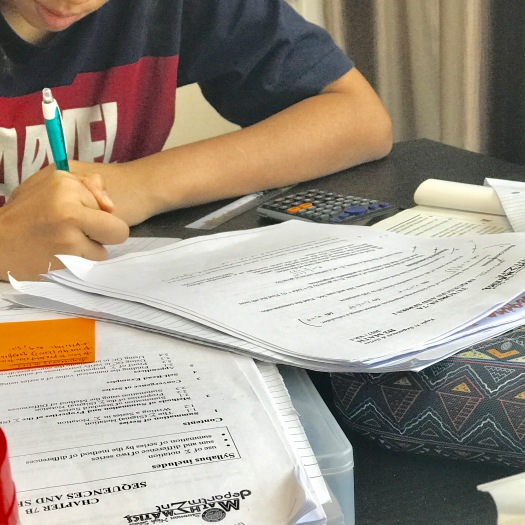 punggol tuition english math science dunman high ip a math