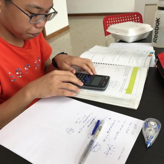 punggol tuition english math science dunman high
